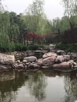 郑州尚城华府